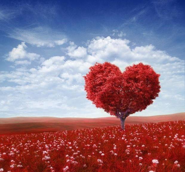 San Valentino per voi